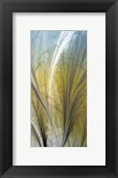 Framed Fountain Grass III