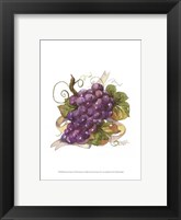 Framed Watercolor Grapes I