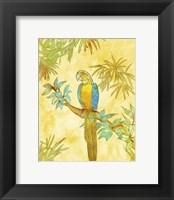 Framed Macaw on Branch I