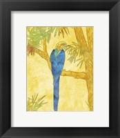 Framed Macaw on Branch II
