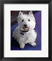 Framed West Highland Terrier