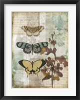 Music Box Butterflies I Framed Print