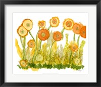 Framed Sunlit Poppies II