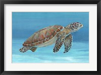 Framed Ocean Sea Turtle I