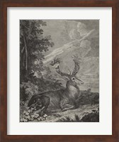 Framed Woodland Deer III