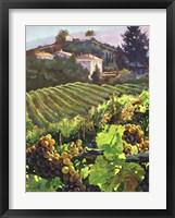 Siena Harvest Framed Print