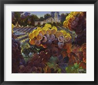 Fall Preview Framed Print