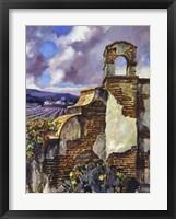 Mission Vineyard Framed Print