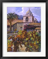 Vineyard at San Miguel Framed Print