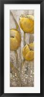 Ochre Tulips II Framed Print