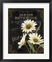 Framed Botanical Collection I