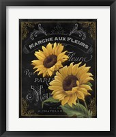 Botanical Collection II Framed Print