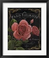 Botanical Collection III Framed Print