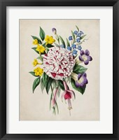 Spring Posy IV Framed Print