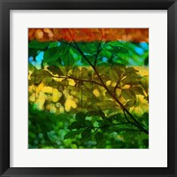 Framed Abstract Leaf Study I