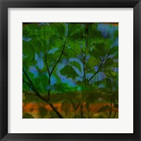 Framed Abstract Leaf Study V