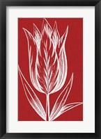 Framed Chromatic Tulips VIII