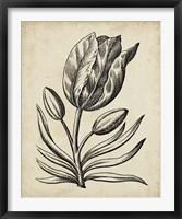 Framed Distinguished Floral I