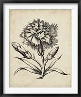 Framed Distinguished Floral III