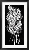 Framed Palm Leaf Fresco II