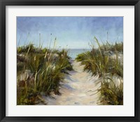 Framed Seagrass and Sand