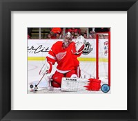 Framed Jimmy Howard Hockey Goal Tending
