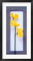 Framed Rectangular purple frame with yellow flowers on green stems in center on pink background