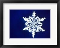 Framed Snowflake 1