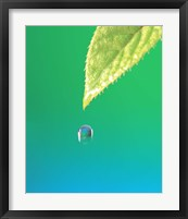 Framed Droplet Falling From Green Leaf with Green and Teal Colored Background