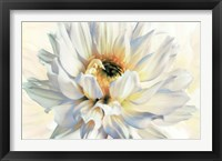 Framed Painted Petals I