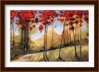 Framed Forest Trail