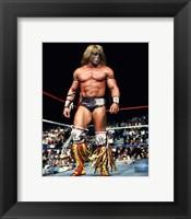 Framed Ultimate Warrior Action