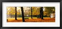 Framed Park Bavaria Germany