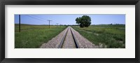 Framed Telephone poles along a railroad track, Custer County, Nebraska