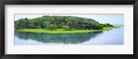 Framed Trees at Rachel Carson Coastal Nature Preserve, Beaufort, North Carolina, USA