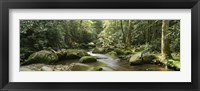 Framed Roaring Fork River, Great Smoky Mountains, Tennessee
