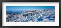 Framed Winter in Utsukushigahara Nagano Japan