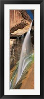 Framed Calf Creek Falls UT USA