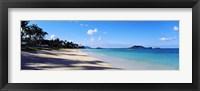 Framed Palm trees on the beach, Lanikai Beach, Oahu, Hawaii, USA