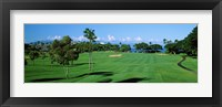 Framed Trees , Kaanapali Golf Course, Maui, Hawaii, USA