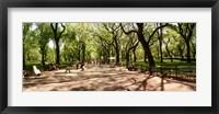 Framed Central Park, New York City, New York State