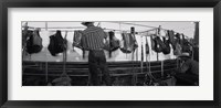 Framed Cowboy with tacks at rodeo, Pecos, Texas