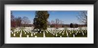 Framed Headstones in a cemetery, Arlington National Cemetery, Arlington, Virginia, USA