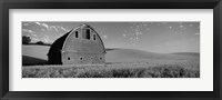 Framed Black and White view of Old barn in a wheat field, Washington State