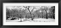 Framed Central Park in Snow