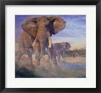 Framed Hold Em and Fold Em - elephants