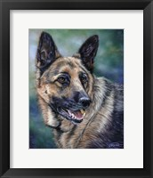 Framed German Shepard