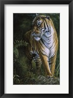 Framed Tiger! Tiger!