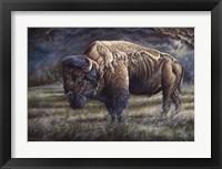 Framed Spirit Of The Plains (Bison)