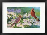 Framed Cardinals Of Spring